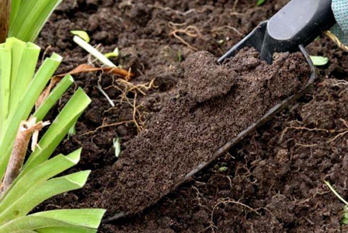 Земля плодородная купить землю